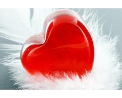 Четырнадцать идей подарка на 14 февраля!